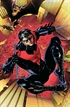 Nightwing: Nuevo universo