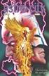 Astro City vol. 07: La Edad Oscura 2 - Hermanos de sangre