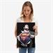 Displate - DC / Superman - Alex Ross