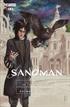 Sandman: El corazón de una estrella (Edición especial limitada)