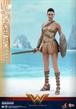 Hot Toys - WONDER WOMAN Training version / Figura de acción escala 1/6
